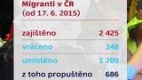 Počet zajištěných nelegálních migrantů