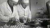 Restaurace Praha v Moskvě (1955)