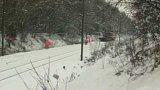 Sněhová kalamita (2005)