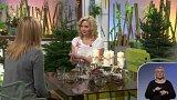 Vánoční koření pro zdraví - Simona Procházková + anketa