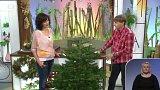 Sdružení pěstitelů vánočních stromků - František Valdman