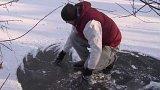 Masivní úhyn ryb na Brněnsku