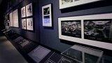 Výstava Davida Cronenberga Evolution