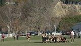 Líheň ragbyových talentů Wairarapa Bush