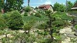 Japonská kamenná zahrada
