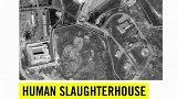 Zpráva o mučení a vraždách v Sýrii