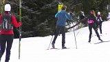 Skiareály v provozu