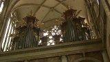 Akustika v katerdrále
