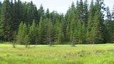 Zákon o ochraně přírody a krajiny
