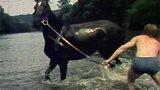 Dovolená jezdeckého oddílu TJ Lokomotiva Kolín (1981)