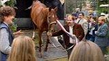 Jezdecký klub Světlá Hora (1989)
