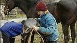 Útulek pro starší koně (2001)