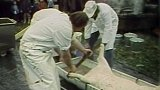 Teplická městská zabijačka (1987)