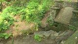 Studánky v Krčském lese