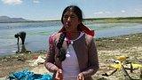 Znečištění jezera Titicaca