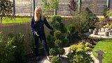 Zahrada v japonském duchu