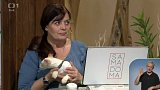 Týdenní seriál - kočky - péče o chrup - 1. část