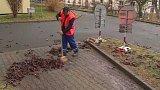 Jarní čištění ulic