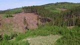 Záchrana Beskydských lesů