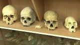 Významný objev pro Homo Sapiens