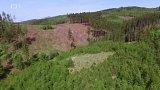 Beskydské lesy zanikají