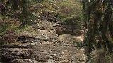 Lesní park Bezděz