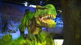 Liberec: Místa obchodů zaplnili dinosauři