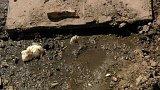 Zápach z poškozené jímky trápí obyvatele Jáchymova