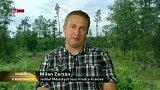 Ředitel Městských lesů Hradec Králové živě ve studiu