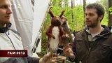 Triky a animace v pohádce Kovář z Podlesí