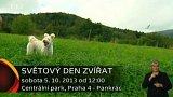 Pozvánka: Světový den zvířat