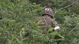 Jihokorejský voják zabil pět svých druhů