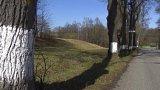 V jihočeském Velešíně končí spor o místní lipovou alej