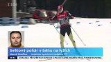 Světový pohár v běhu na lyžích