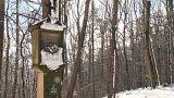 Křížová cesta Malenisko u Provodova