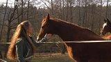 Děti poznávají koně – seniory