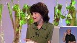 Empatická výchova - Mgr. Kateřina Neubauerová (chat) - 2. část