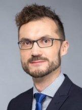 David Břinčil