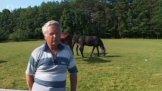 Farma Koňská stezka