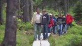 Rašeliniště Černé hory