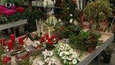 Rostlinná vánoční výzdoba