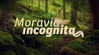 Moravia Incognita
