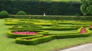 Rajské zahrady