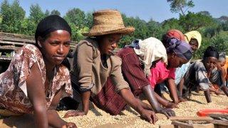 Na cestě po Oromsku