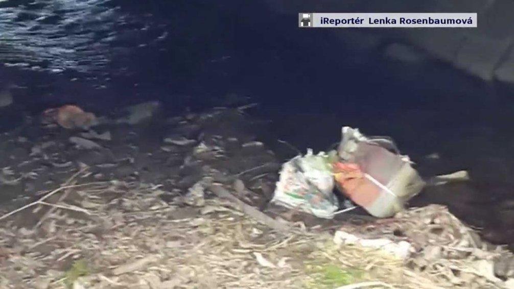 Odpad v potoce