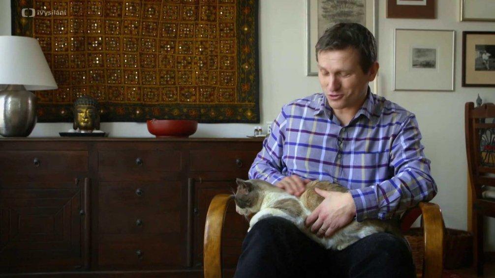 Kočka a izolepa
