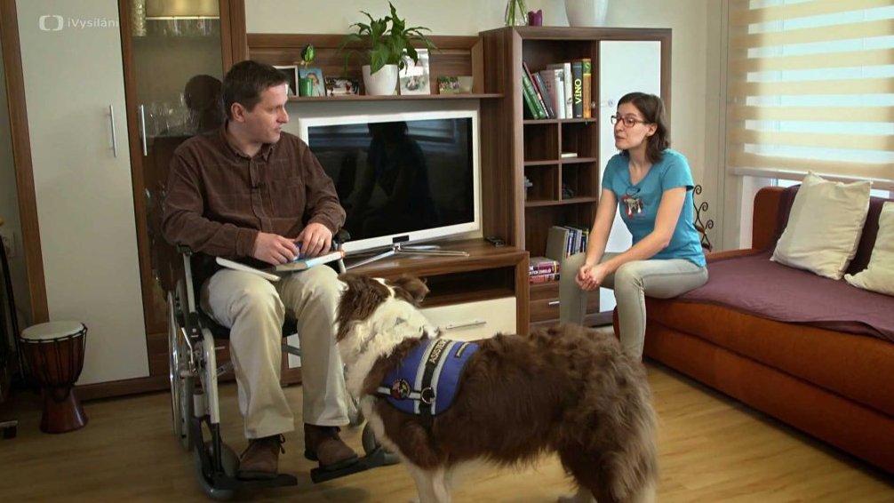 Asistenční psi - Pestrá společnost