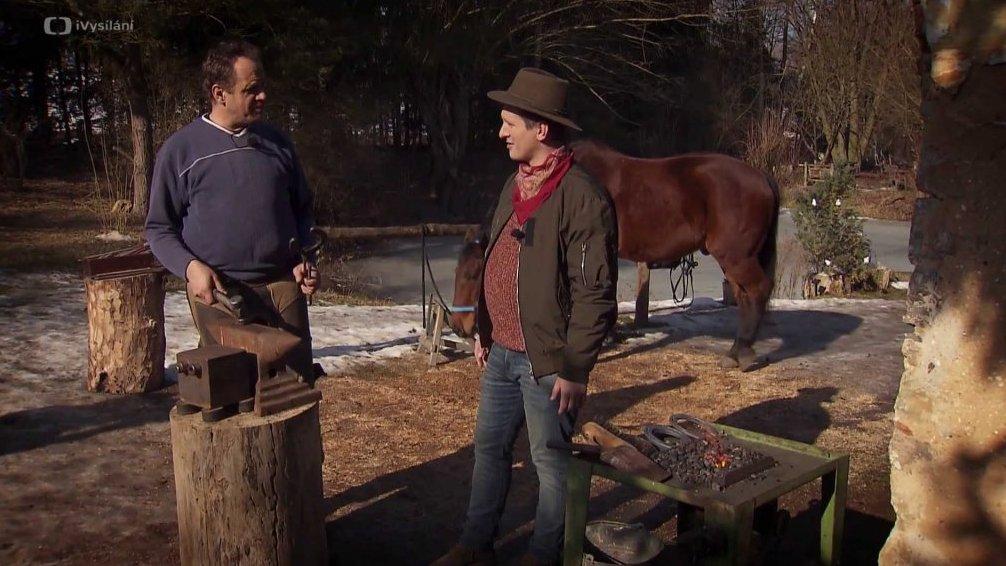 Kování koní