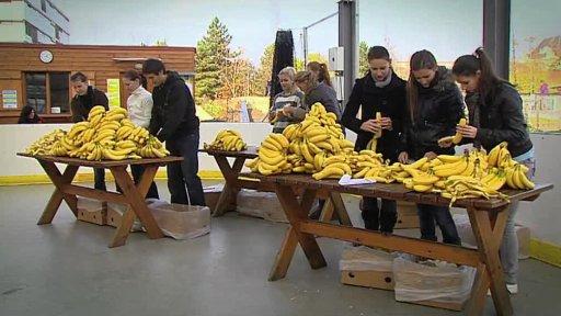 Běh po banánových slupkách