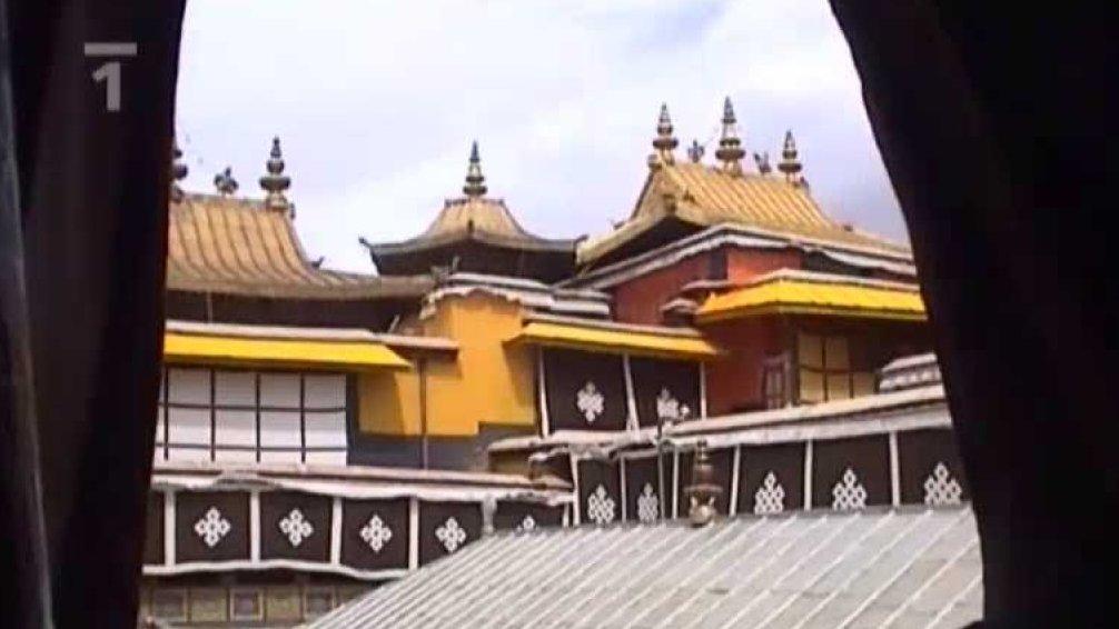 Nabozenstvi Sveta Buddhismus Ceska Televize